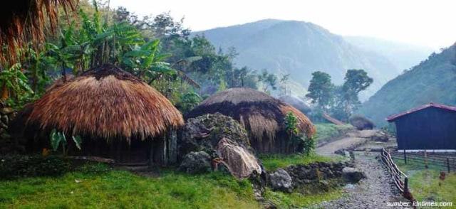 50 Gambar Rumah Adat Papua Dan Namanya HD Terbaru