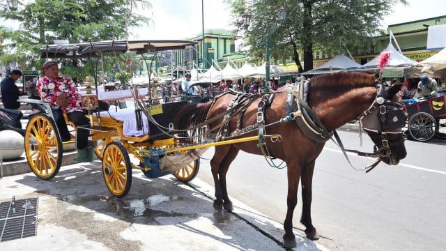 Kusir sedang menunggu penumpang bersama delman dan kudanya di Jalan Malioboro
