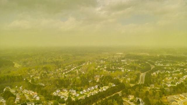 Kabut serbuk sari di Durham, North Carolina