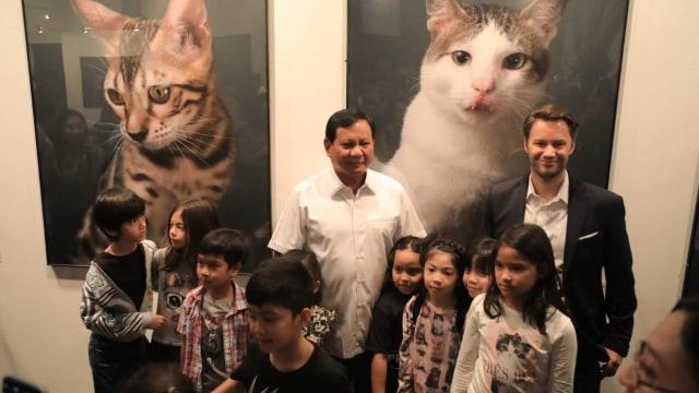 Pameran Foto Kucing, Prabowo