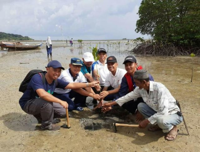 Mahasiswa UMRAH dan Banyan Tree Bintan Tanam 2.000 Bibit Mangrove (219872)