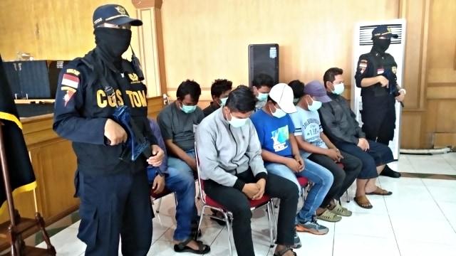 Bea Cukai Gagalkan Penyelundupan 28 Burung Langka dari Pulau Buru (803442)
