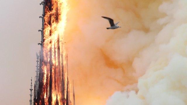 Foto: Api Melahap Katedral Notre Dame, Paris (200622)