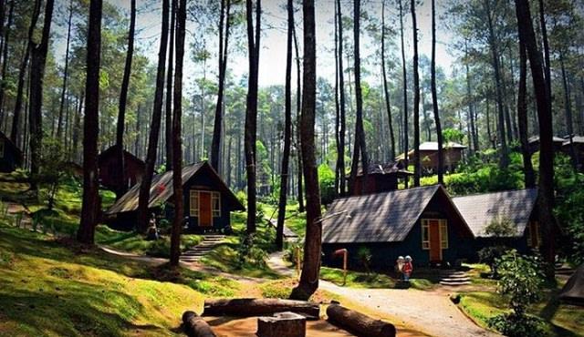 Rumah Hobbit Bandung Grafika Cikole.jpg