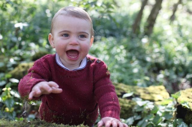 Foto: Pangeran Louis yang Menggemaskan (5280)