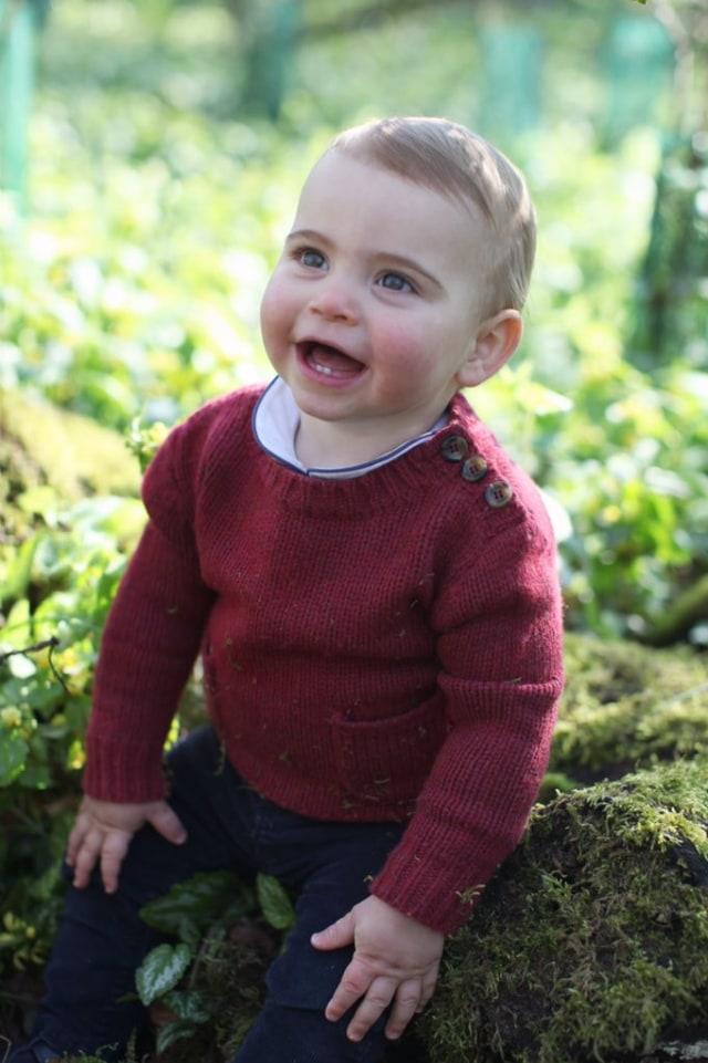Foto: Pangeran Louis yang Menggemaskan (5281)