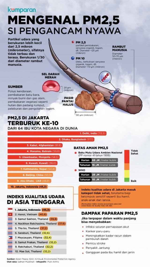 Selain Malaysia dan Singapura, Thailand juga Kena Kabut Asap Indonesia (1188591)