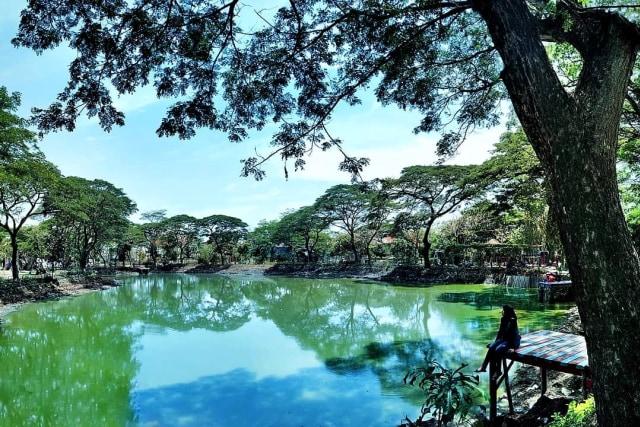 3 Tempat Wisata Alam Tersembunyi di Surabaya (307814)