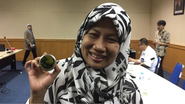 Teni Ernawati, peneliti kimia LIPI.