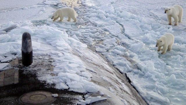 Ilustrasi kutub utara, Arktik
