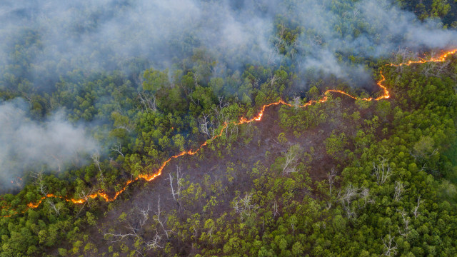 Pemadaman Kebakaran Di Gunung Arjuno Terkendala Sumber Air Kumparan Com