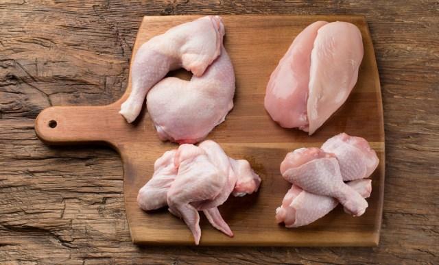 Ilustrasi Daging Ayam