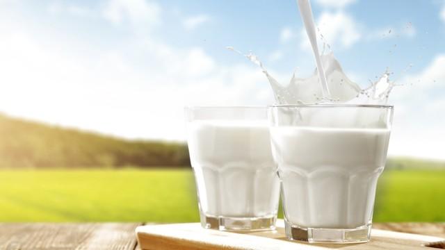 Riset: Minum Susu Sapi Setiap Hari Tingkatkan Risiko Kanker  Payudara 80 Persen (1)