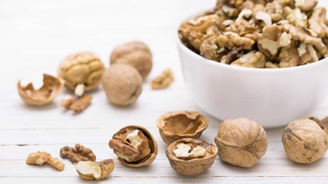 Image result for Kacang Kenari