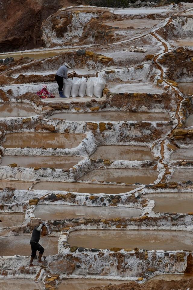 Terasering garam, Salinas de Maras, Peru (NOT COVER)