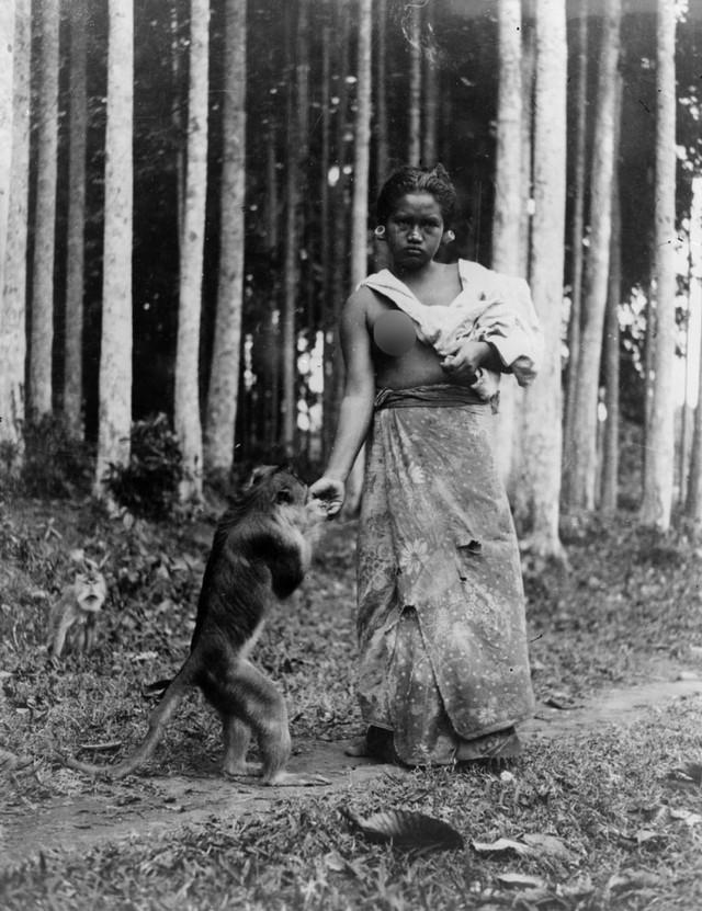 Asal Muasal Tradisi Oleh-oleh di Indonesia (253254)