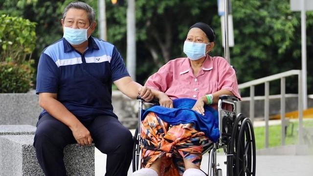 Hinca: SBY Sedang Fokus Menulis Buku dan Lagu untuk Ibu Ani (59989)