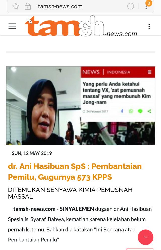 ani hasibuan, tamsh-news.com