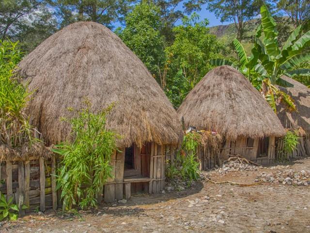 Honai Rumah Adat Papua Berbentuk Jamur Yang Khusus Dihuni Para Pria Kumparan Com