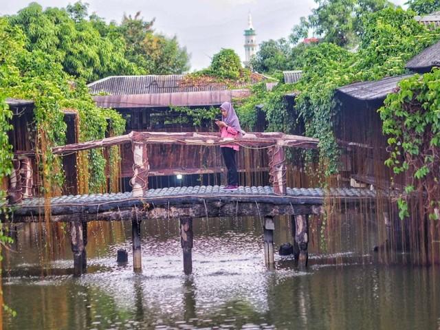 Jembatan Zona Alam.jpg