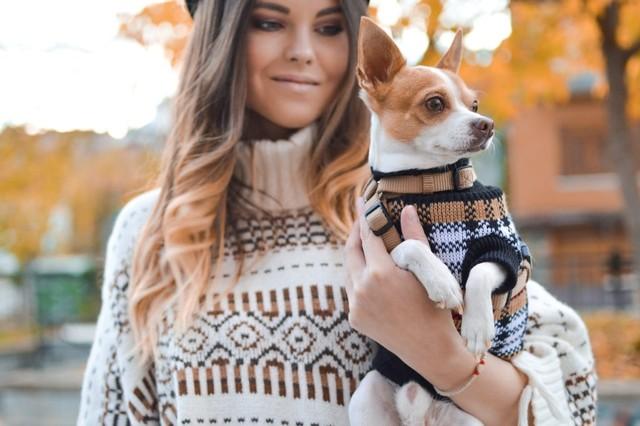 Riset: Pelihara Anjing Turunkan Risiko Serangan Jantung dan Stroke (35162)