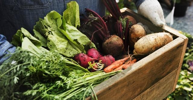 Benarkah Makanan Organik Lebih Menyehatkan? (84377)