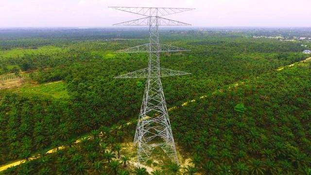 Industri Ingin Pakai Jaringan Listrik PLN untuk Pasok Energi Bersih (371025)