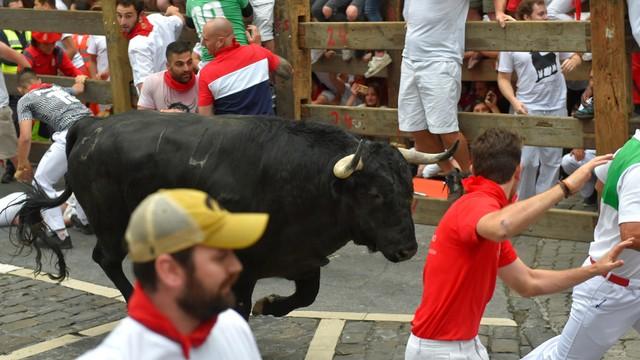 banteng bertarung Puerto de San Lorenzo saat festival San Fermin di Pamplona, Spanyol utara