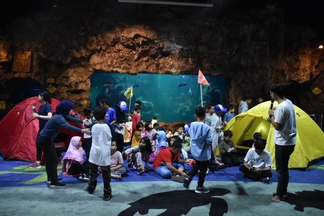 com-Program Camping Under The Sea dari Ancol