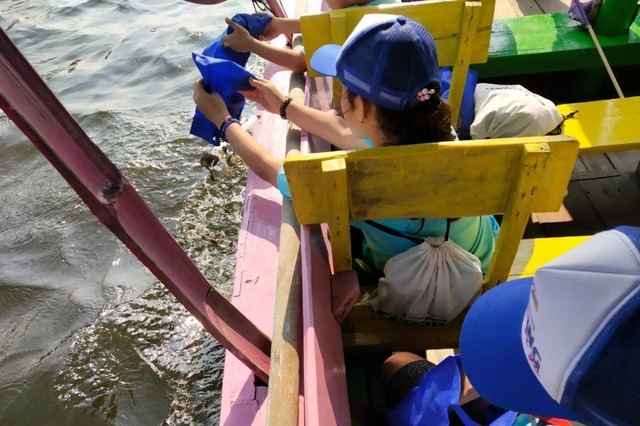 com-Menebarkan kulit kerang hijau untuk konservasi air laut