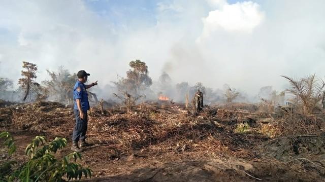 6 Hektare Lahan Terbakar di Aceh Selatan (2).jpeg