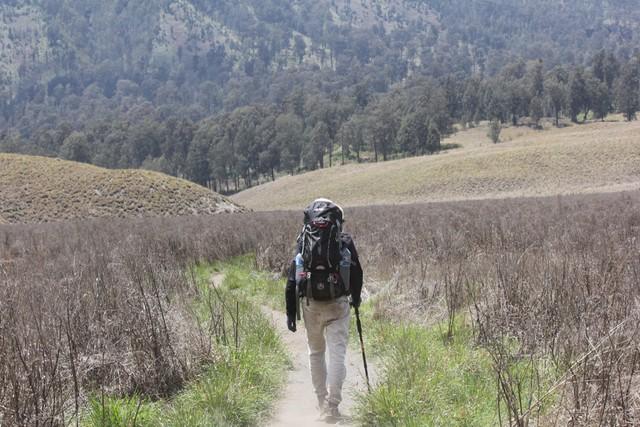 Lagi, Viral Video Pendaki Tertangkap Basah Petik Edelweis di Gunung Lawu (202563)