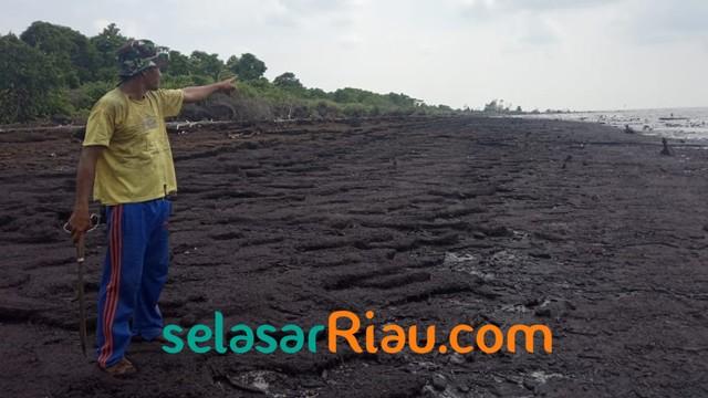 Akibat Abrasi, 4 Pulau Gambut di Riau Terancam Tenggelam (27965)