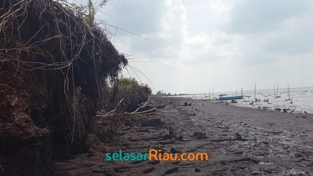 Akibat Abrasi, 4 Pulau Gambut di Riau Terancam Tenggelam (27968)