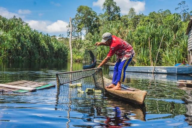 com-RER bekerja sama dengan 21 nelayan dari Teluk Meranti dan Pulau Muda untuk memastikan para nelayan memiliki akses yang aman serta mengedukasi menangkap ikan yang berkelanjutan.