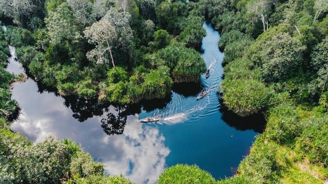 com-RER adalah salah satu proyek restorasi ekosistem terbesar di Indonesia  yang diinisiasi dan didanai oleh APRIL Group.