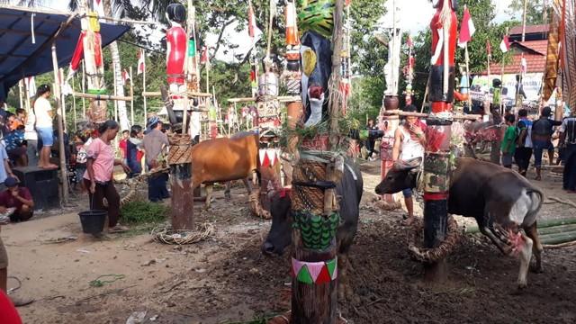 Ritual Tiwah, Upacara untuk Mengantarkan Arwah dalam Suku Dayak (339500)