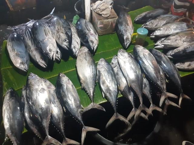 Ikan di Pasar Arumbai Dipastikan Aman Dikonsumsi (537627)