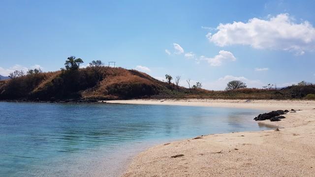 Foto: Pesona Terumbu Karang di Pulau Nisa Pudu, NTB (1088)