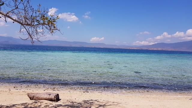 Foto: Pesona Terumbu Karang di Pulau Nisa Pudu, NTB (1090)