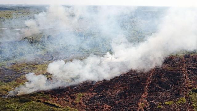 Malaysia Rugi Rp 5 Triliun akibat Asap Karhutla Indonesia pada 2013    (181153)