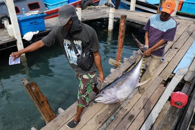 Foto: Melihat Tuna Tangkapan Nelayan Aceh yang Tembus Pasar Dunia (1056683)