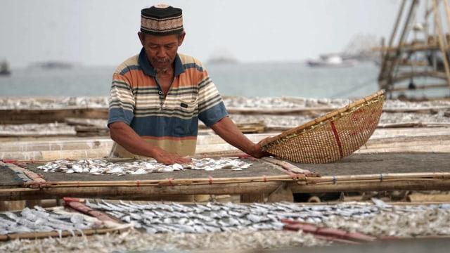 Daya Beli Petani dan Nelayan Kompak Naik di Agustus 2019 (207789)