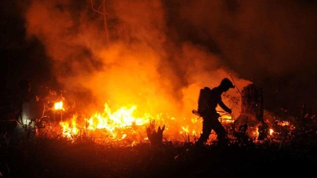 Kebakaran lahan di perbatasan Sumsel-Jambi