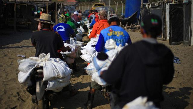 Foto: Menyapu Tumpahan Minyak Karawang  (377272)