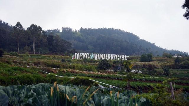 Banjarnegara Tutup Seluruh Tempat Wisata Selama PPKM Level 3-4 Diperpanjang (513256)