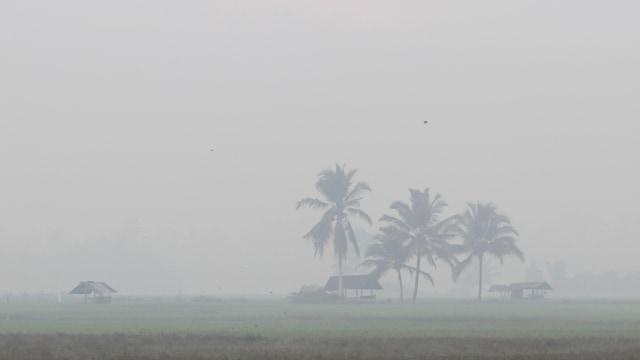 Kabut asap dampak kebakaran hutan dan lahan menyelimuti Kota Pekanbaru, Riau