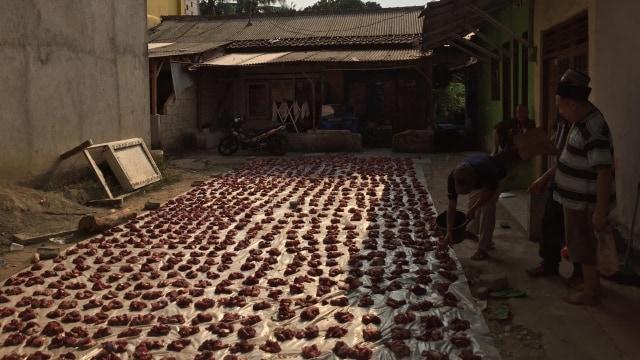 Bono, Pengurus Masjid yang Tetap Salat Id Saat Sapi Seruduk Jemaah  (1234248)
