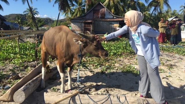 Pengalaman Berharga Chiki Fawzi Berkurban di Pelosok Indonesia  (82415)
