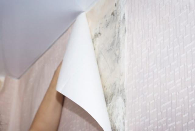 cara memasang wallpaper dinding dari bawah